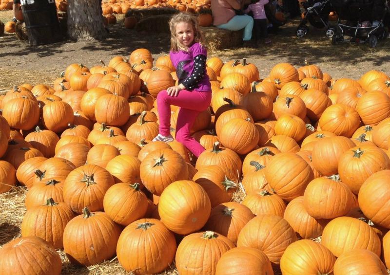 sophie on pumpkins