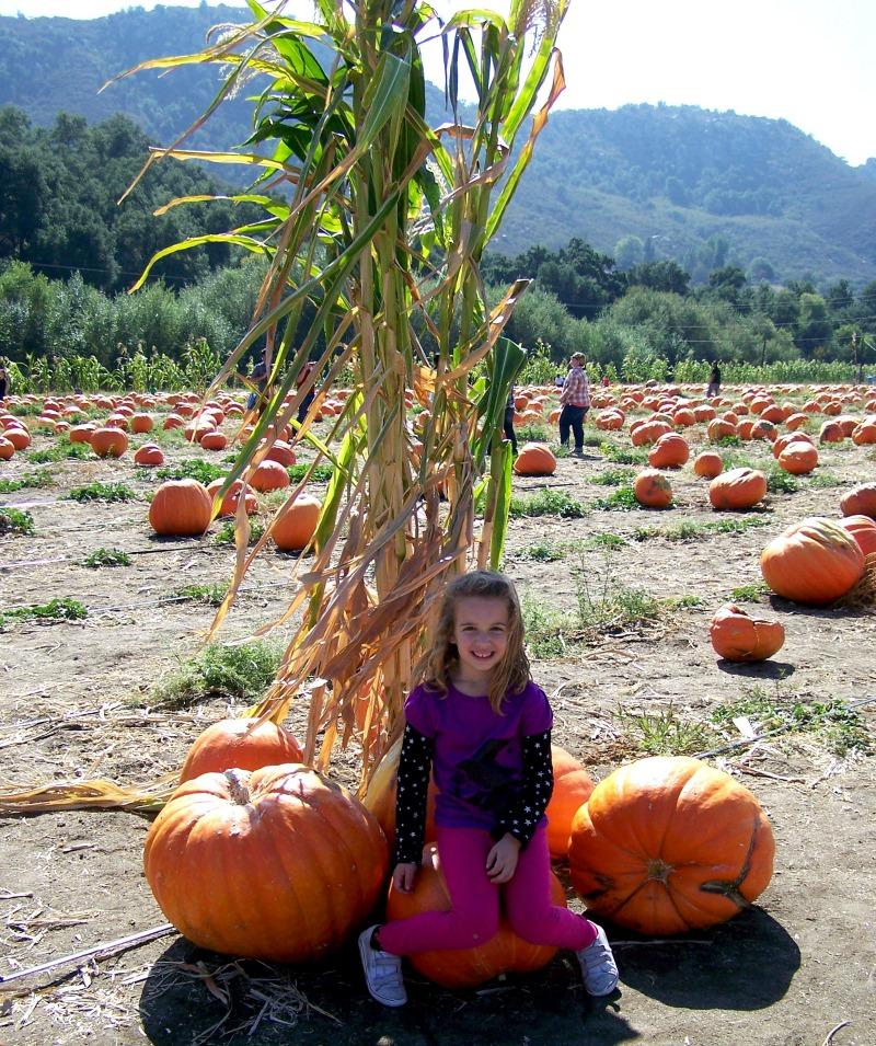 sophie with pumpkin corn