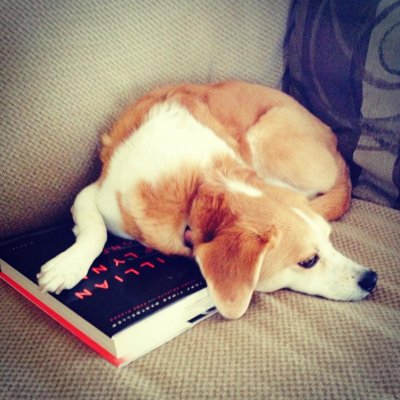 casey book