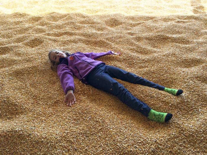 Iowa corn pit